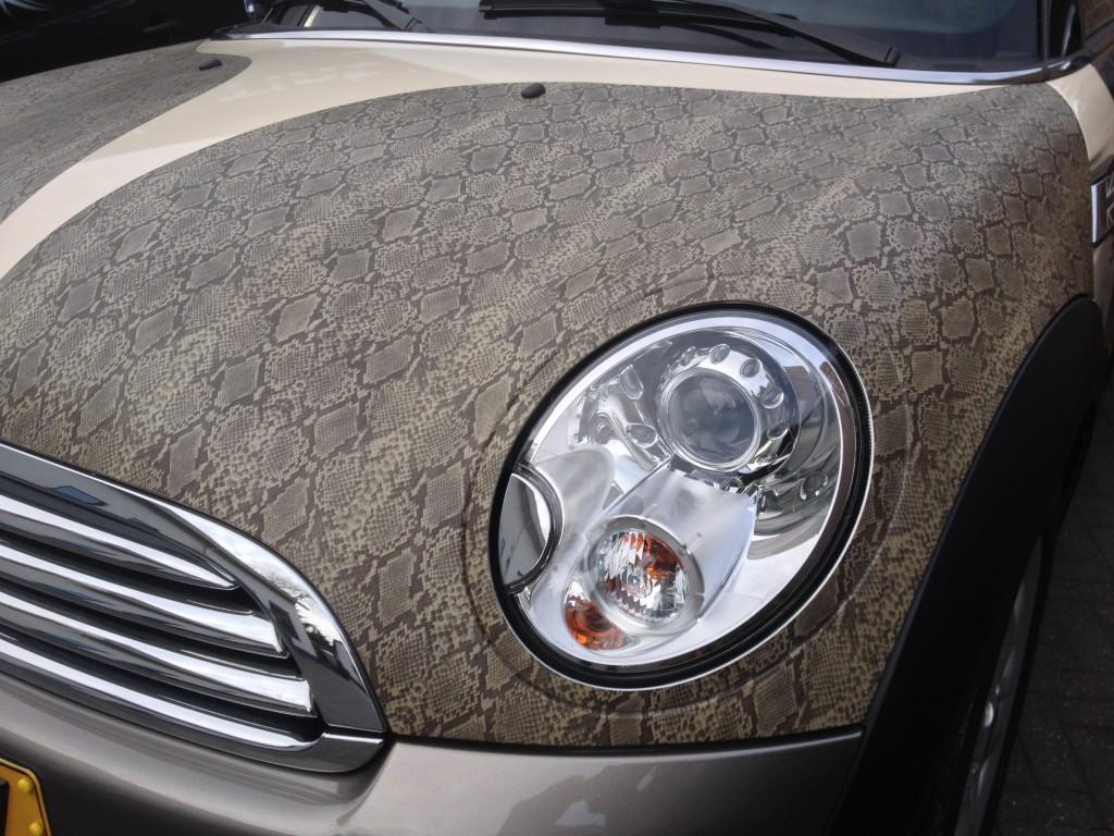 autowrappen slangenleer