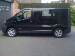 autoramen-tinten Opel Vivaro
