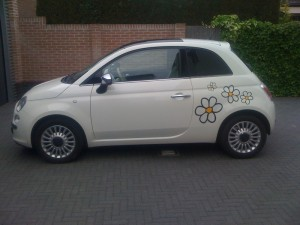 ramen tinten Fiat 500