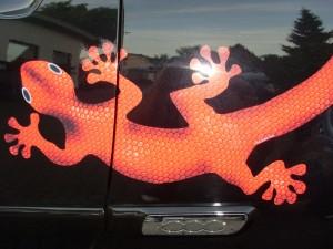 Car design Salamander