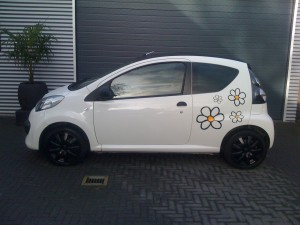 design print Tint your car