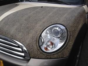 autowrappen slangenleer Mini Cooper One 3